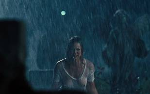 abbie cornish breasts in wet see through from seven psychopaths 0667 15