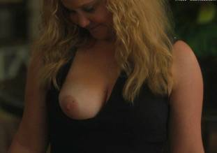 amy schumer topless in snatched 1585 5
