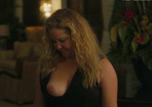 amy schumer topless in snatched 1585 6