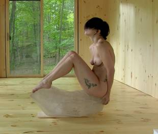 lady gaga nude top to bottom for the abramovic method 2806 13